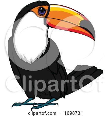 Toucan Bird Mascot by Vector Tradition SM