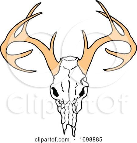 Deer Skull by LaffToon