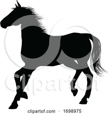 Horse Silhouette Animal by AtStockIllustration
