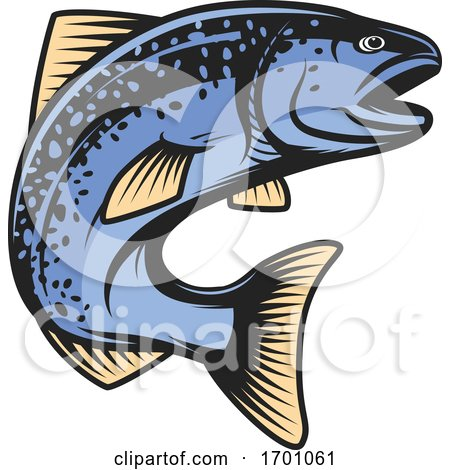 Jumping Blue Salmon Fish by Vector Tradition SM