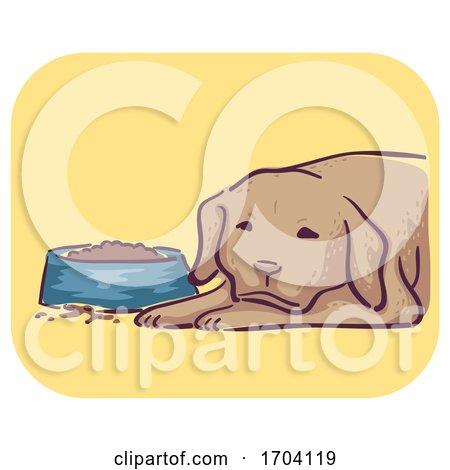 Dog Symptom Loss Appetite Illustration by BNP Design Studio