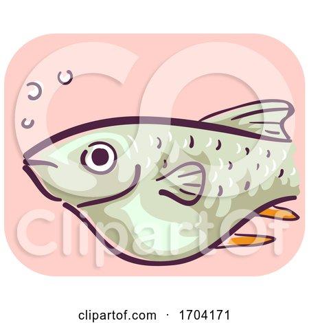 Barb Fish Bloated Constipation Illustration by BNP Design Studio