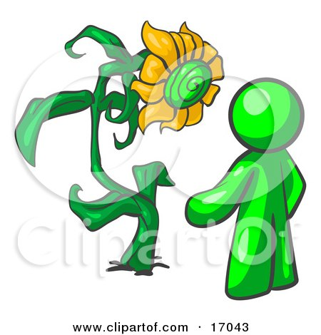 Lime Green Man Standing Proud In Front Of A Giant Yellow Sunflower In His Garden  Posters, Art Prints
