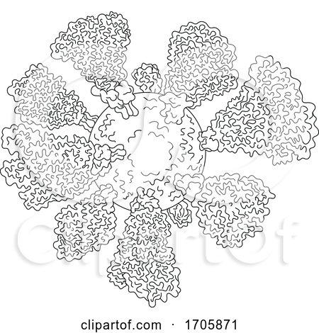 Coronavirus Cell Miscroscopic Line Drawing by patrimonio