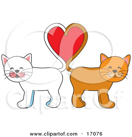 Two Cats, One White, One Orange, Standing Tail To Tail And Forming A Heart, Symbolizing Love On Valentine's Day Clipart Illustration by Maria Bell