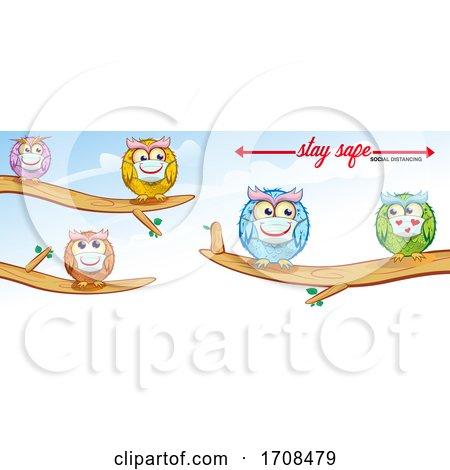 Owls Wearing Coronavirus Masks and Social Distancing by Domenico Condello