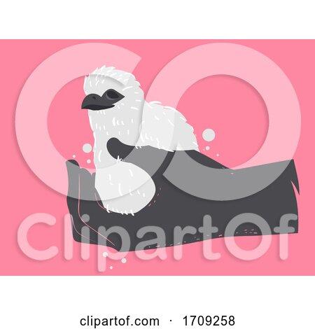 Hand Birds of Prey Chicks Theft Illustration Posters, Art Prints