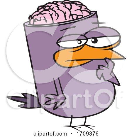 Cartoon Bird Brain by toonaday