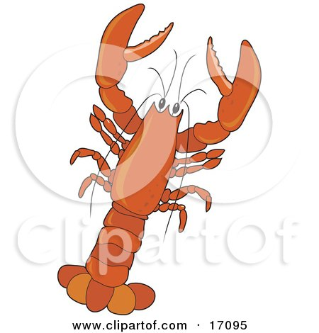 Large Red Lobster With Claws Clipart Illustration by Maria Bell