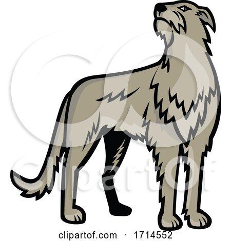 Scottish Deerhound by patrimonio