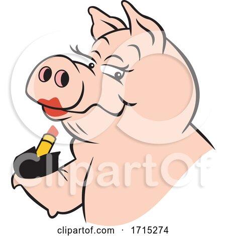 Lipstick on a Pig by Johnny Sajem