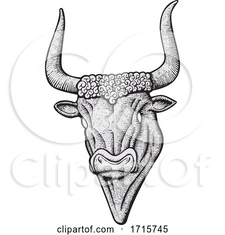 Black and White Minotaur Head by Any Vector