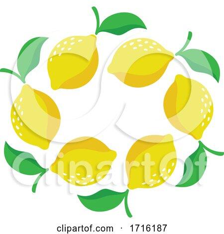Lemons by elena