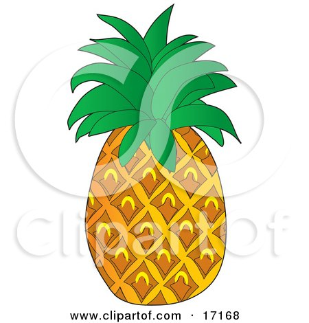 Perfect Pineapple Fruit With Leaves on the Top Clipart Illustration by Maria Bell