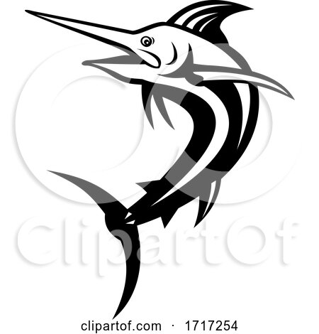 Atlantic Blue Marlin Swimming up Retro Black and White by patrimonio