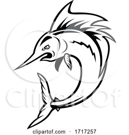 Atlantic Sailfish Jumping Cartoon Black and White by patrimonio