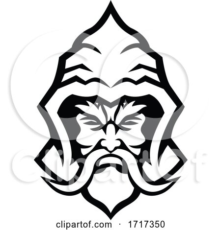 Wizard Sorcerer Warlock Head Front View Mascot Black and White by patrimonio