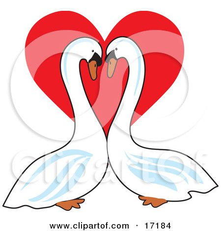 http://images.clipartof.com/small/17184-Pair-Of-Mute-Swans-Face-To-Face-Gazing-At-Eachother-In-Front-Of-A-Red-Valentines-Day-Heart-Clipart-Illustration.jpg