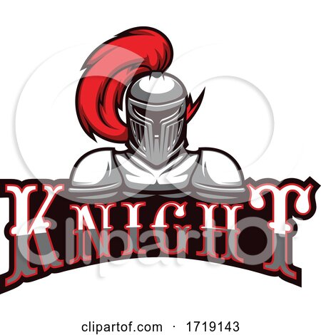 Knight Mascot by Vector Tradition SM