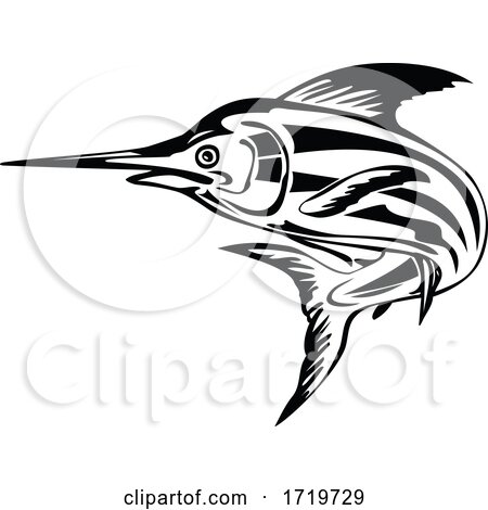 Atlantic Blue Marlin Jumping Upward Retro Black and White by patrimonio