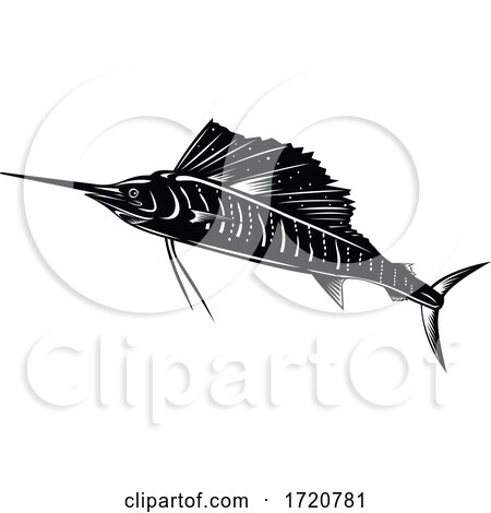 Atlantic Sailfish or Indo Pacific Sailfish Jumping up Retro Woodcut Black and White by patrimonio