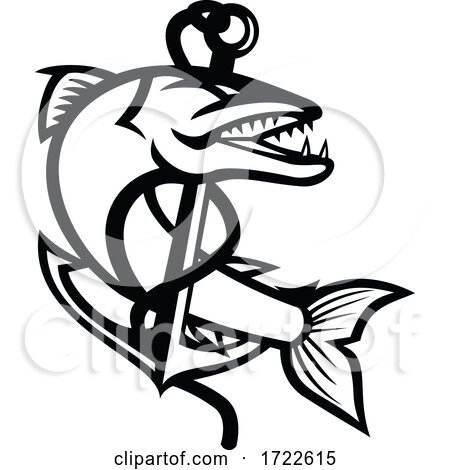 Barracuda Coiling up with Rope and Sea Claw Anchor Mascot Black and White by patrimonio