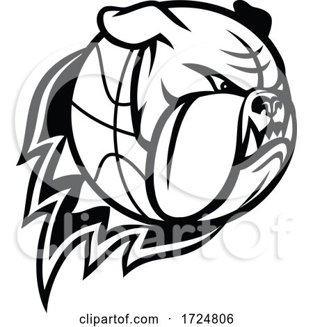 Head of English Bulldog or British Bulldog Basketball Ball on Fire Blazing Mascot Black and White by patrimonio