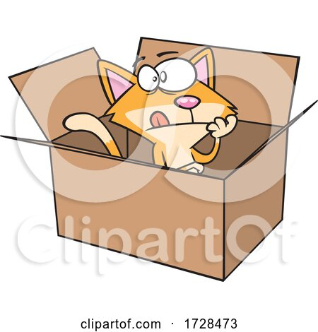 Cartoon Schrodingers Cat in a Box by toonaday