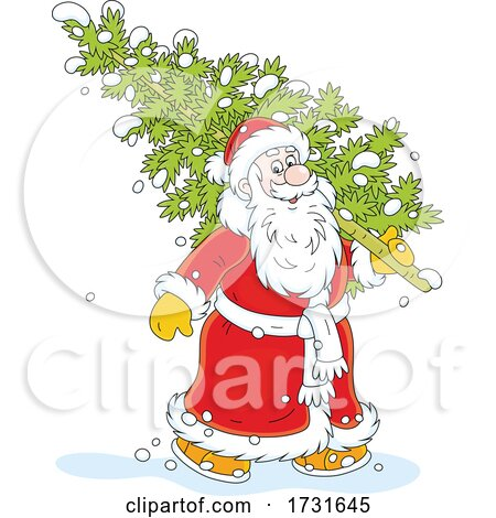 Santa Claus Carrying a Fresh Cut Christmas Tree by Alex Bannykh
