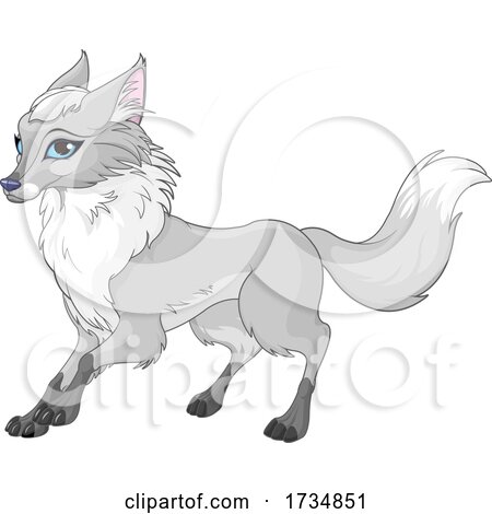 Cute Blue Eyed Fox by Pushkin