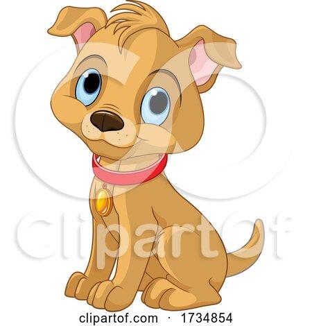 Cute Sitting Blue Eyed Puppy Dog by Pushkin