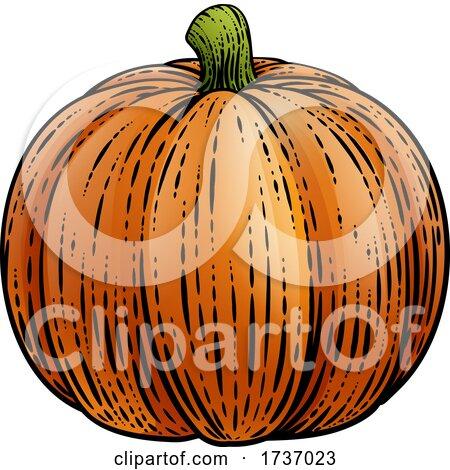 Pumpkin Vegetable Vintage Woodcut Illustration by AtStockIllustration