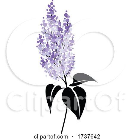 Lilac Flowers by elena