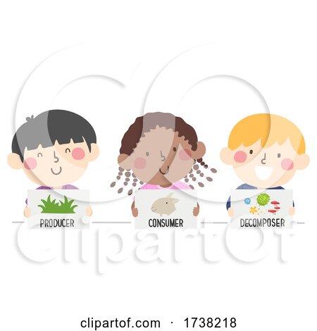 Kids Producer Consumer Decomposer Illustration by BNP Design Studio
