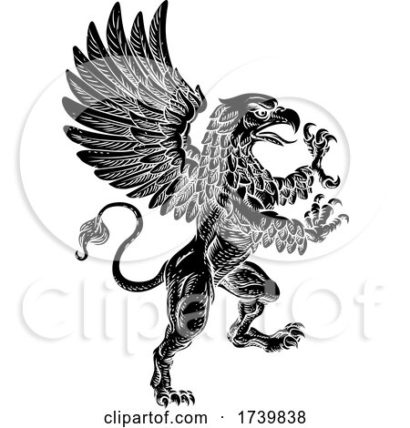 Griffin Rampant Griffon Coat of Arms Crest Mascot by AtStockIllustration