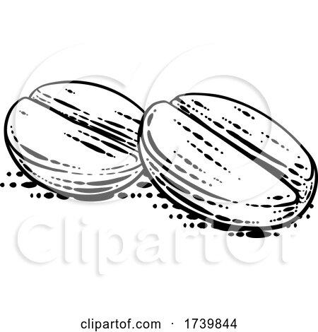 Coffee Beans Illustration Vintage Woodcut Style by AtStockIllustration