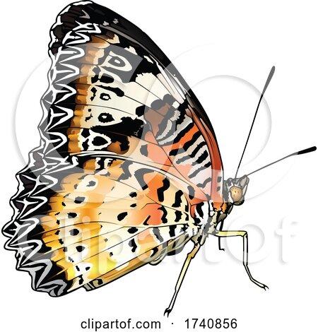 Cethosia Cyane Leopard Lacewing Butterfly by dero