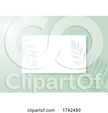 Display Background with Plant Shadow Overlay by KJ Pargeter