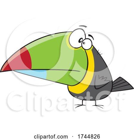 Cartoon Toucan by toonaday