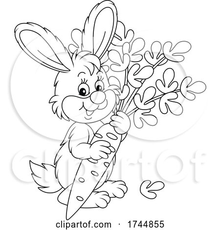 Black and White Cute Rabbit with a Carrot by Alex Bannykh