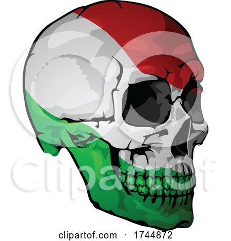 Italian Flag Skull by dero