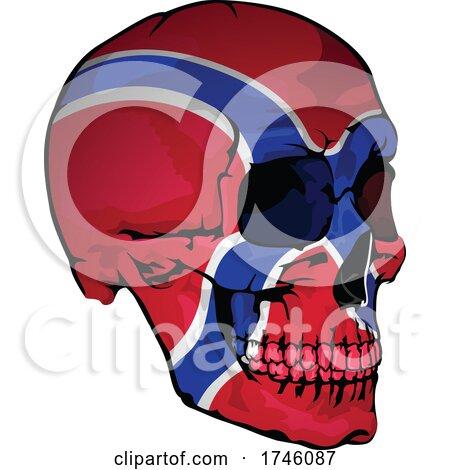 Norway Flag Skull by dero