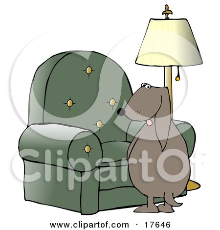 Bad Dog Looking Back Over His Shoulder While Peeing On A Chair In A Living Room Posters, Art Prints