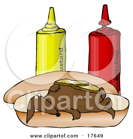Clipart Illustration of a Funny Wiener Dog Topped With Pickle Slices, Lying On His Back On A Hot Dog Bun Beside Ketchup And Mustard Bottles by djart