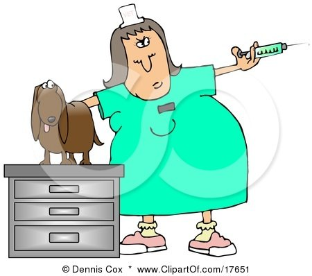 Clipart Illustration of a Vet Tech Preparing a Syringe to be Given to a Dachshund by djart