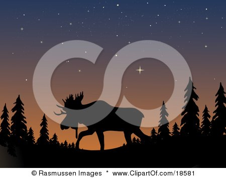 Clipart Illustration of a Silhouetted Moose With Large Antlers, Walking Through the Wilderness Under a Starry Sky at Dusk by Rasmussen Images