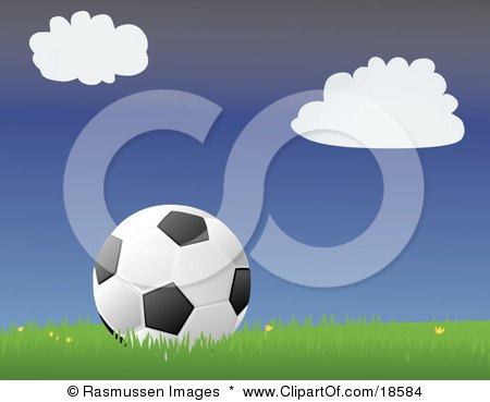 Black and White Soccer Ball Resting in Grass With Small Yellow Flowers on a Soccer Field Posters, Art Prints