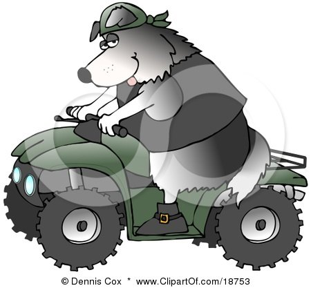 Clipart Illustration of a Cool Border Collie Wearing A Vest And Driving A Green ATV by djart