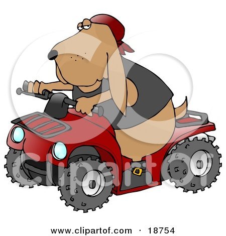 Clipart Illustration of a Cool Hound Dog Wearing A Vest And Driving A Bright Red ATV by djart
