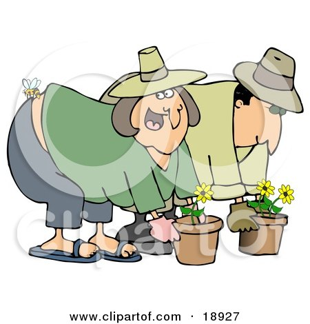 Clipart Illustration of a Caucasian Woman Gardening With Her Husband, Getting Stung On The Butt By A Bee by djart